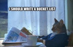 Bucket List Cat
