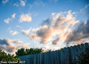 fence-30-apr-17-watermark
